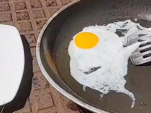 яичницу приготовили на солнце