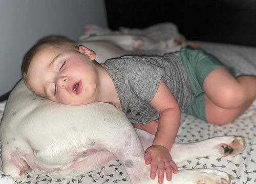 малыш не хочет спать один