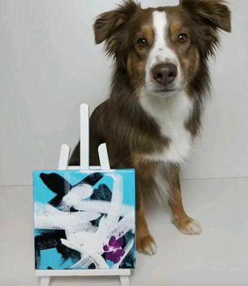 пёс рисует и жертвует деньги