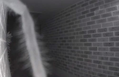 паук звонил в дверь