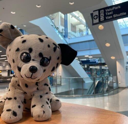 lost a toy at the airport