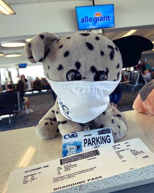 игрушку потеряли в аэропорту