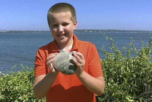 очень крупный моллюск