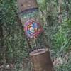 исчезающие стволы деревьев
