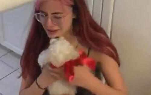 щенок в подарок для дочки