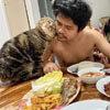 кот украл у жены мужа