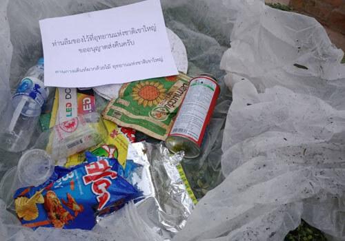 мусор в природном парке