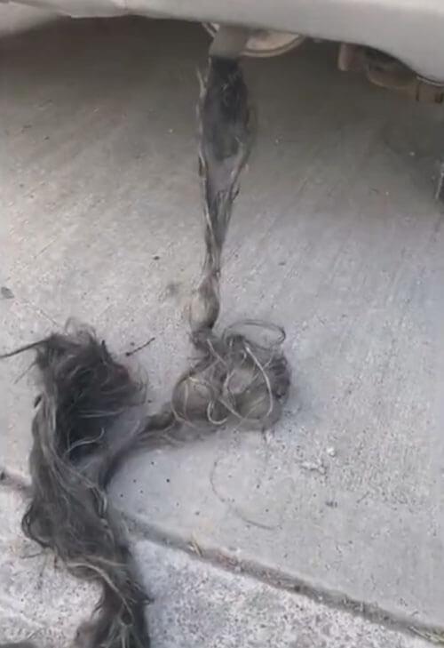 верёвка из отвратительных волос
