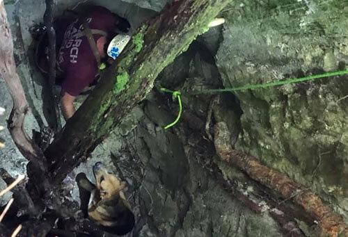 собаку спасли из глубокой ямы