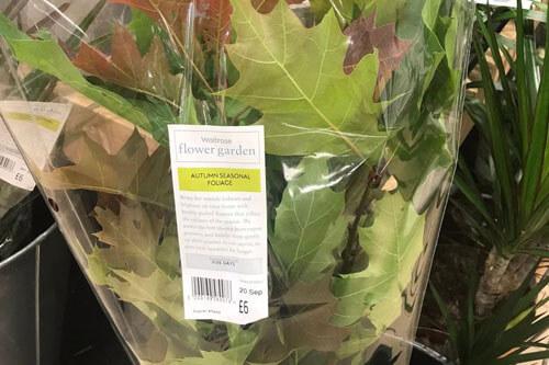 пакет с осенними листьями