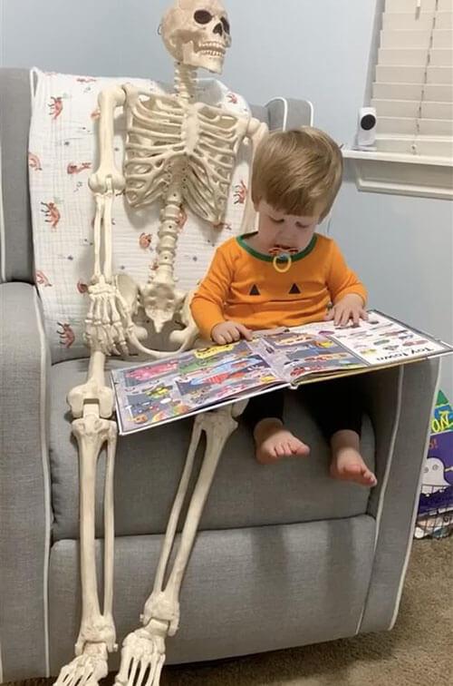 скелет стал любимой игрушкой