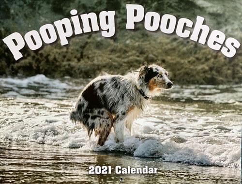 испражняющиеся собаки в календаре