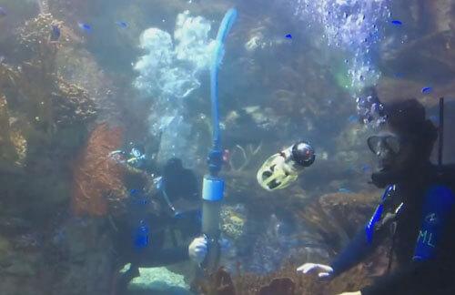 робот-кальмар плавает под водой