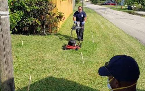 дедушка не смог постричь траву