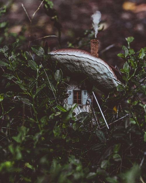 крошечные фантастические домики