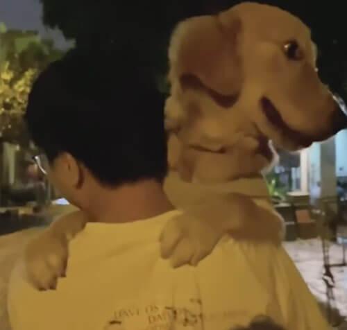 улыбающаяся собака на ручках