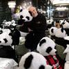 протест с игрушечными пандами