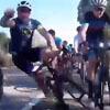водитель задел велосипедиста