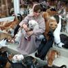 в доме живут несколько сотен кошек
