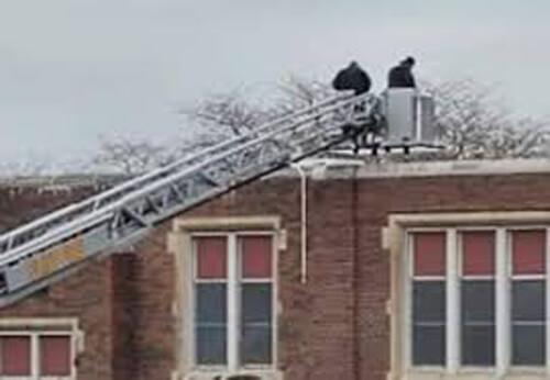 бездомная собака на крыше школы