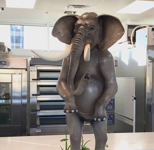 удивительный слон из шоколада