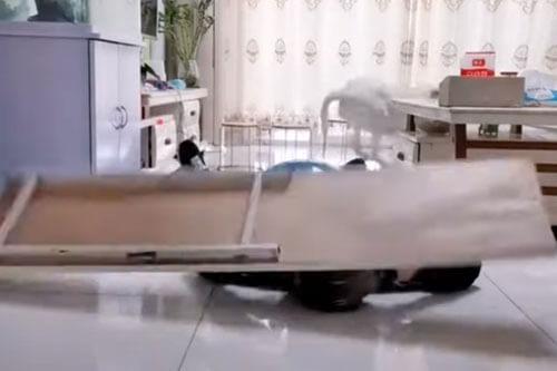 хозяин решил разыграть собаку