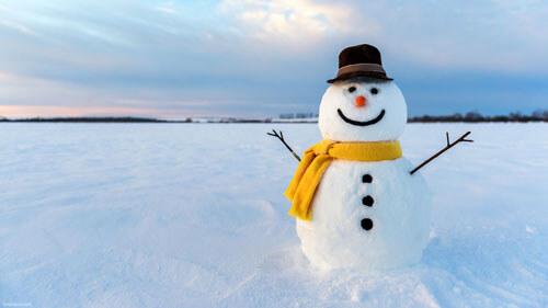 занятия отменили из-за снега