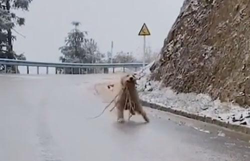 бег по обледеневшей дороге