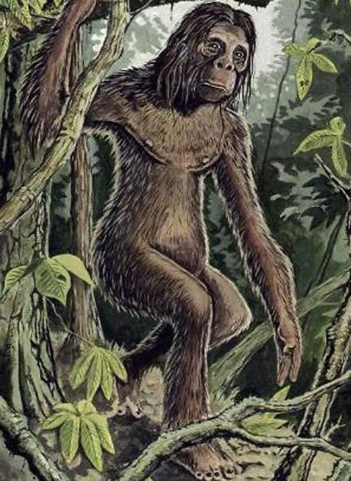 легендарный человек-обезьяна