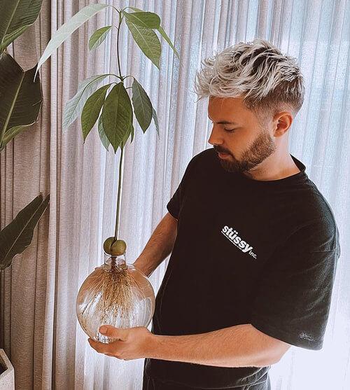 как достать косточку из авокадо