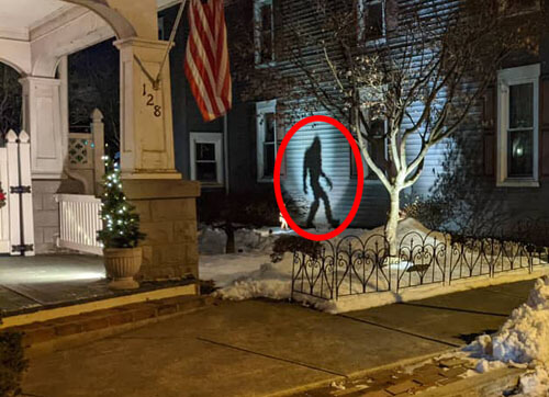 тень снежного человека на стене
