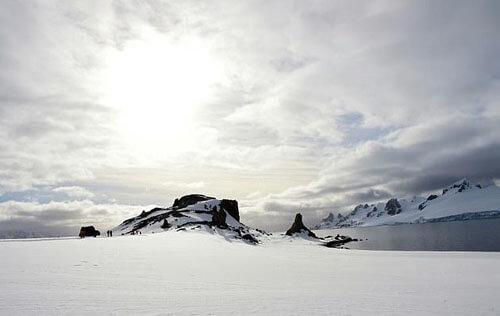 бумажник потерялся в антарктиде