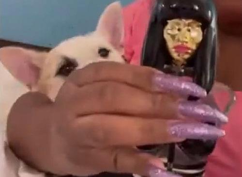 парфюм в глаза щенку
