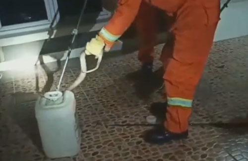 пожарные поймали кобру