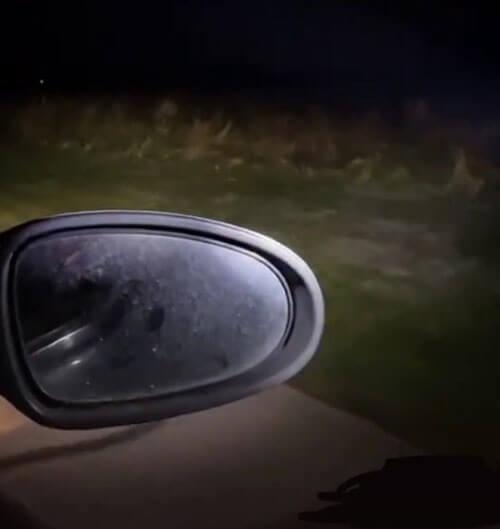 оборотень выскочил из травы