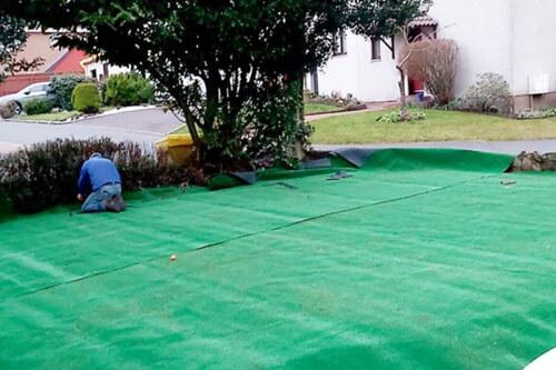 большой зелёный ковёр в саду