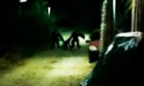 странные существа на ночных улицах
