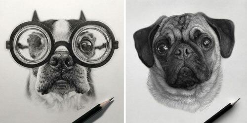 портреты домашних животных