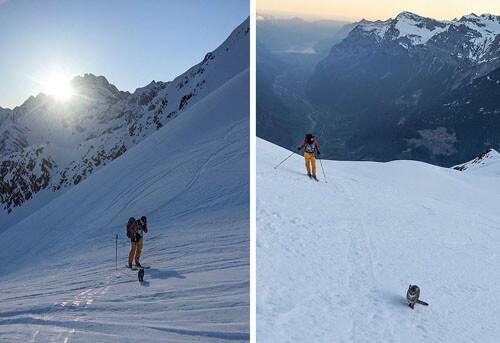встреча с кошкой в горах
