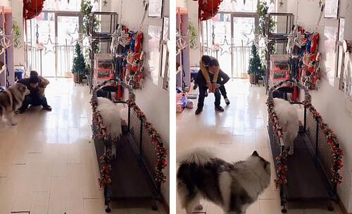 продавщица упала в обморок