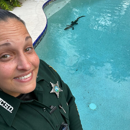 аллигатор в чужом бассейне