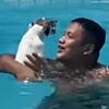 собака и хозяева в бассейне