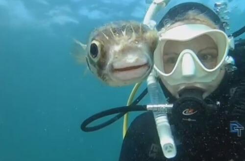 совместное селфи с рыбой