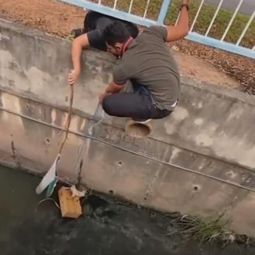 котёнка спасли из канала