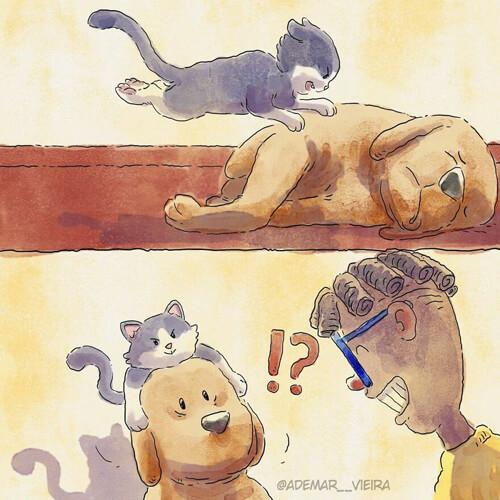 иллюстратор приютил котёнка