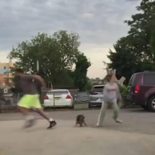 хозяева разбежались от собаки