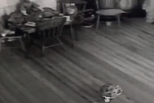призрак играющий в мячик в отеле