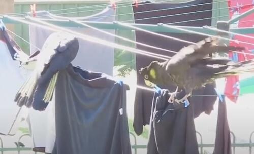 одежду пришлось стирать заново