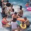 любимая игра и купание