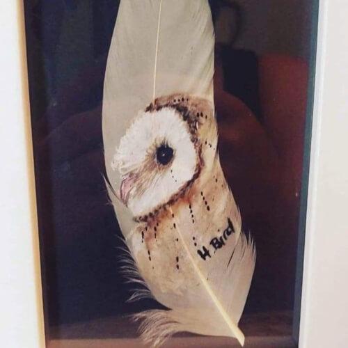 картины на птичьих перьях